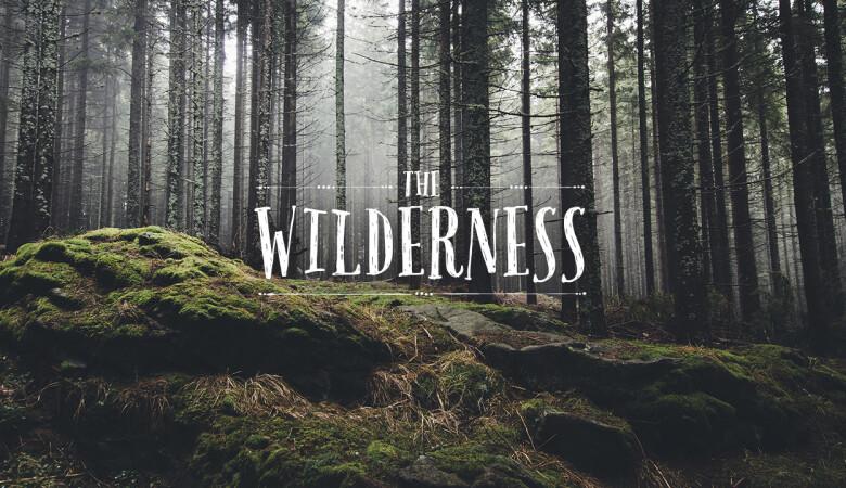 Battling in the Wilderness