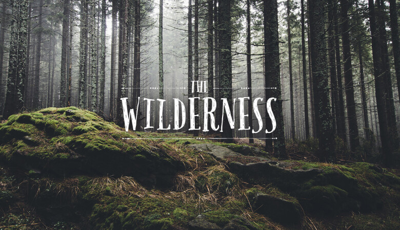 The Value of the Wilderness - Bloomington West